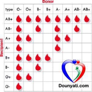 الصحة | دنيتي | تعرف على فئات الدم