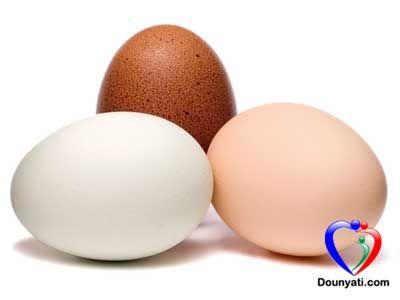 كيف احفظ البيض في ثلاجتي؟